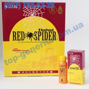 Thailand Red Spider